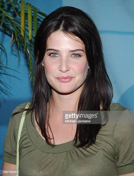 Cobie Smulders Starring in 'How I Met Your Mother'