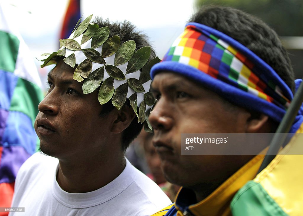 Coca growers chew coca leaves during a celebration for the reincorporation of Bolivia to the UN Convention Against Illicit Traffic in Narcotic Drugs in La Paz on January 14, 2013. 'The coca leaf is not any more seen as cocaine (..), it is a victory of our identity' said Bolivian President Evo Morales. AFP PHOTO/Jorge Bernal