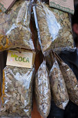 Coca leaves for sale at the pilgrim church on Monserrate Hill Bogota Colombia