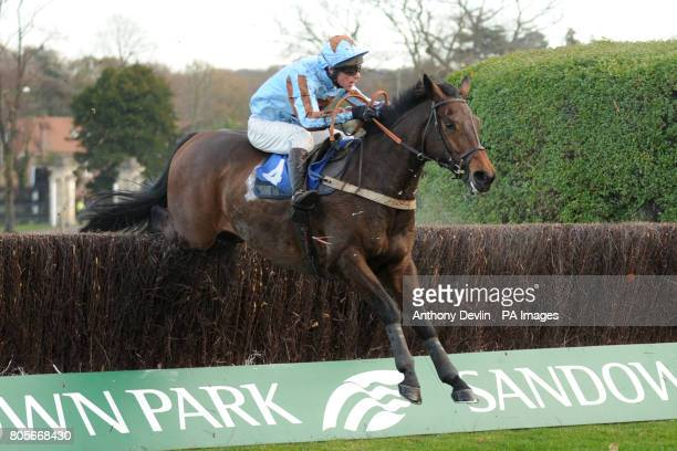 Cockatoo ridden by Philip Hide in the Sign Up Bonus At betinternetcom Novices' Handicap Chase during Tingle Creek Friday at Sandown Racecourse