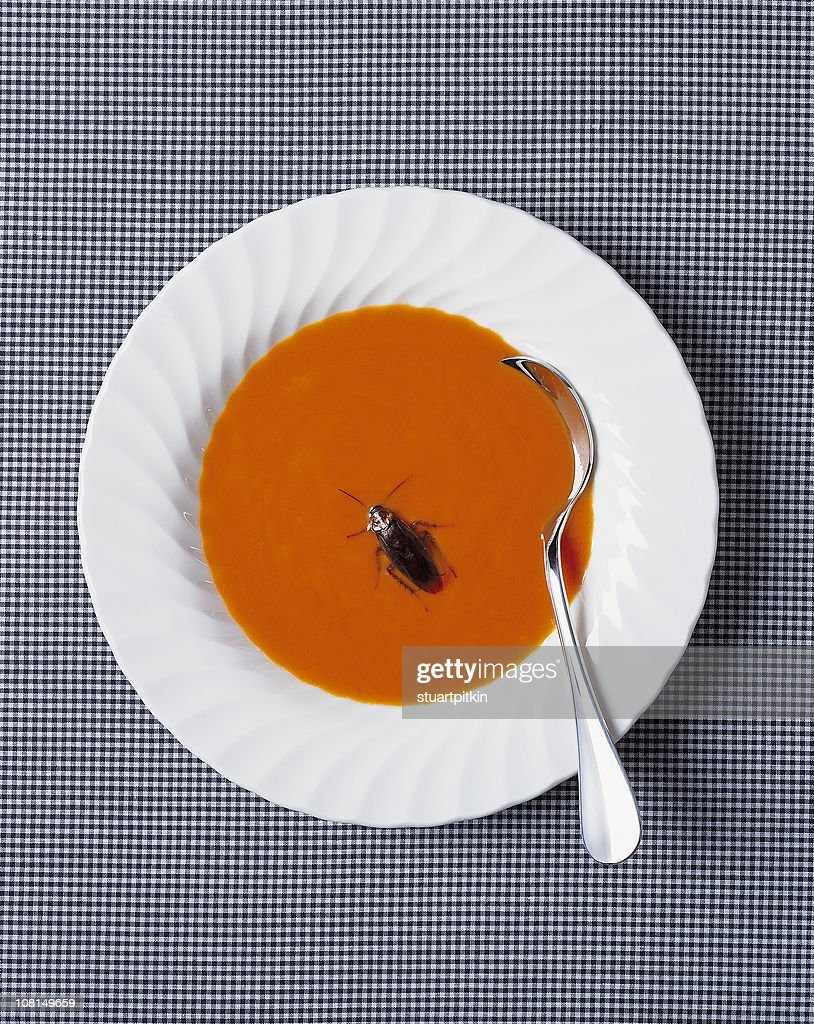 Cockroach in bowl of soup.