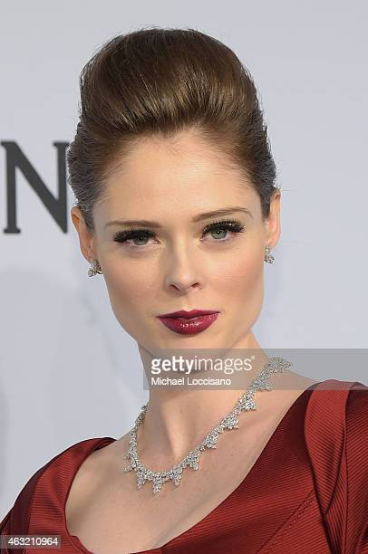 Coco Rocha attends the 2015 amfAR New York Gala at Cipriani Wall Street on February 11 2015 in New York City