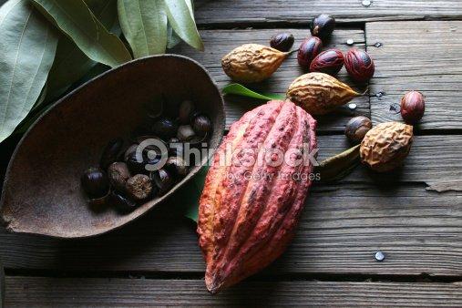 Cocoa bean and nutmeg : Stock Photo