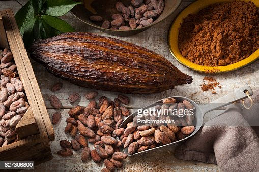 Cocoa beans and pod : Stock Photo
