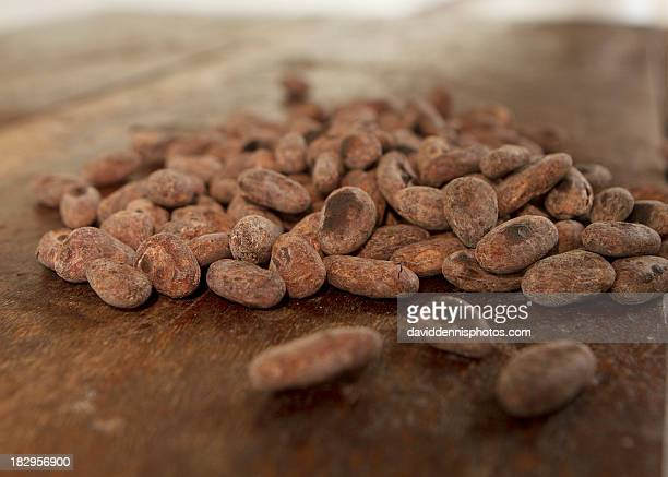 Cocoa Beans in Granada