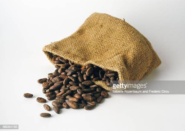 Cocoa beans spilling out of bag