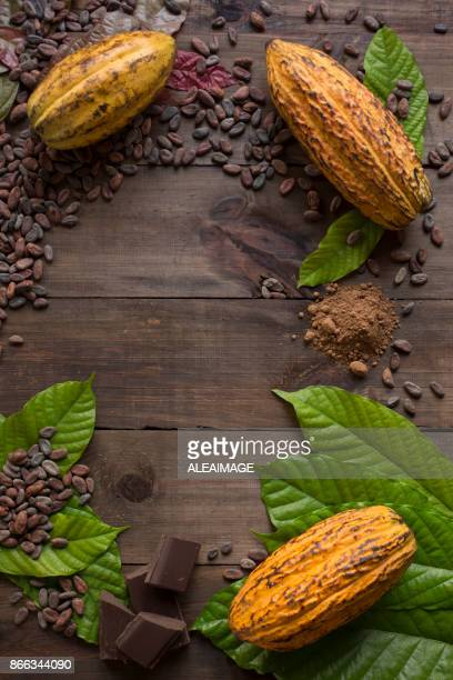 Cocoa composition