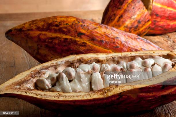 Cocoa fruit - Foodstuff.