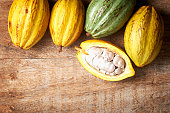 cocoa fruit background
