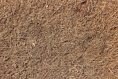 Coconut coir. Grated coconut shell for the production of mattresses. Seamlless texture, natural background.