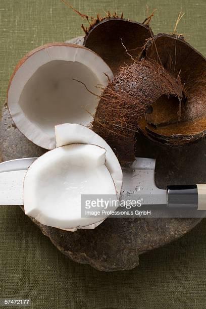 Coconut, cut open