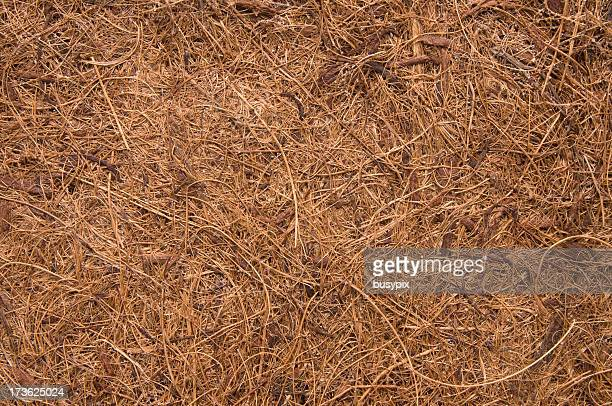 Coconut Fiber Background