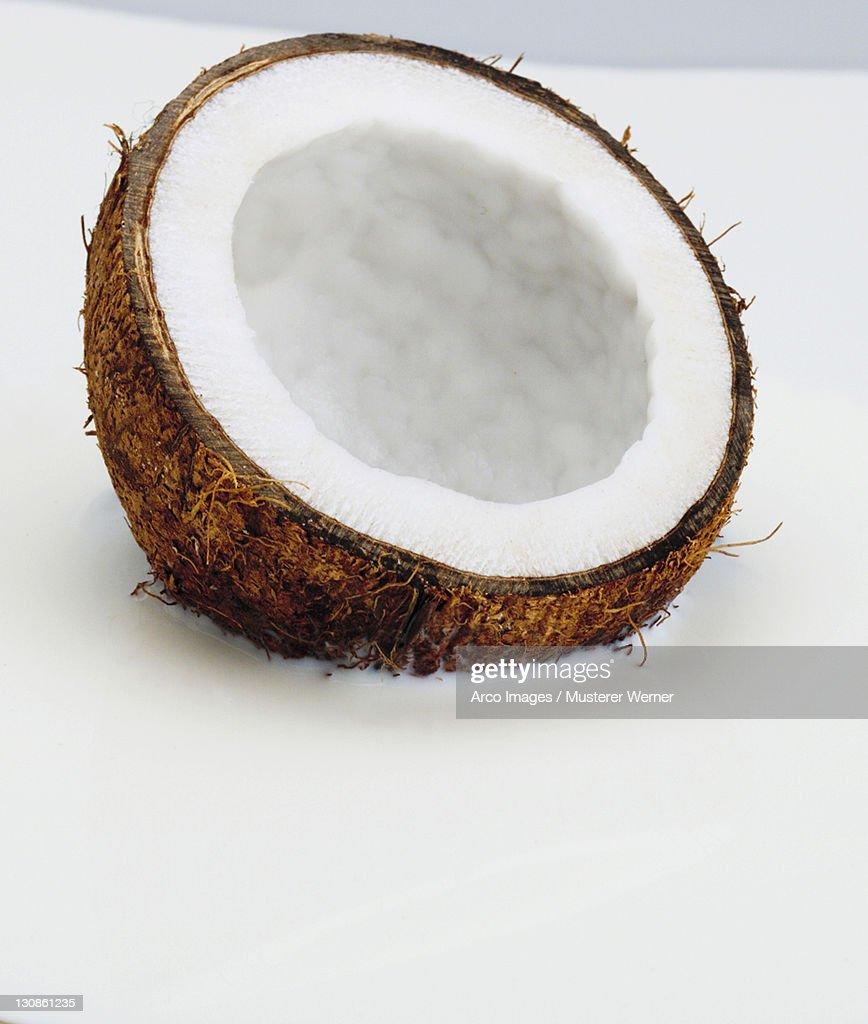 Coconut in milk / (Cocos nucifera)