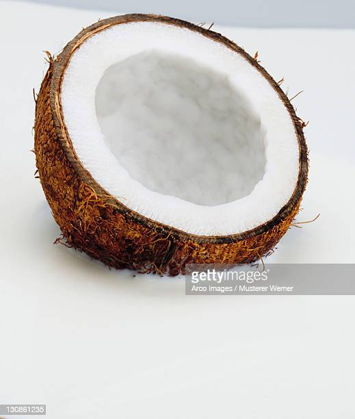 Coconut in milk / (Cocos nucifera)
