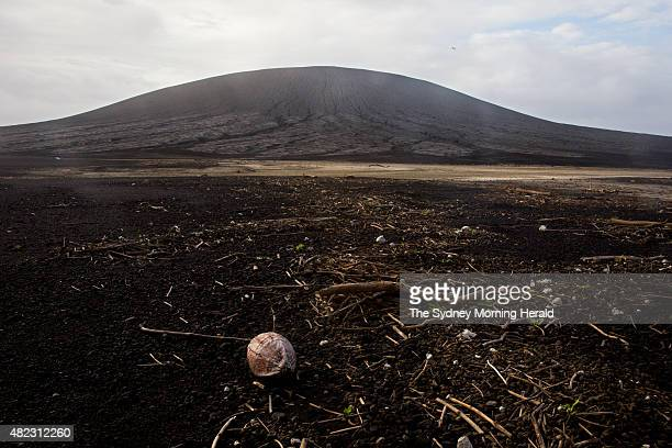 A coconut is washed up on the shore of the newest island on Earth July 10 2015 The island emerged from the waters of the South Pacific in January...