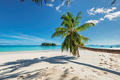 Tropical beach with palm trees, sea boats, blue sky, turquoise water and white sand.