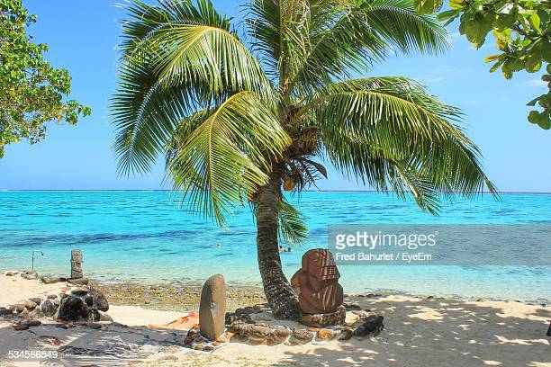 Coconut Palm Tree On Beach Against Turquoise Sea