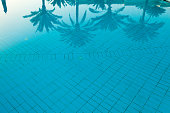 Coconut palm tree reflection on the swimming pool background