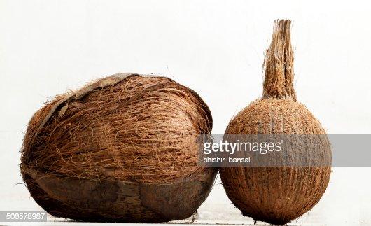 Kokosnuss : Stock-Foto