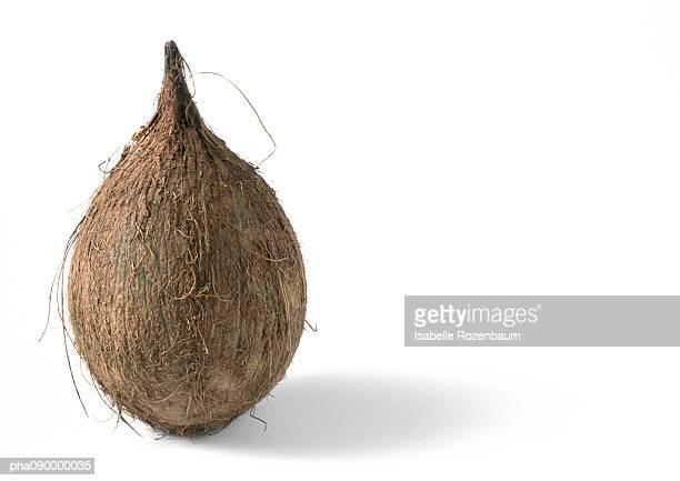 Coconut, white background