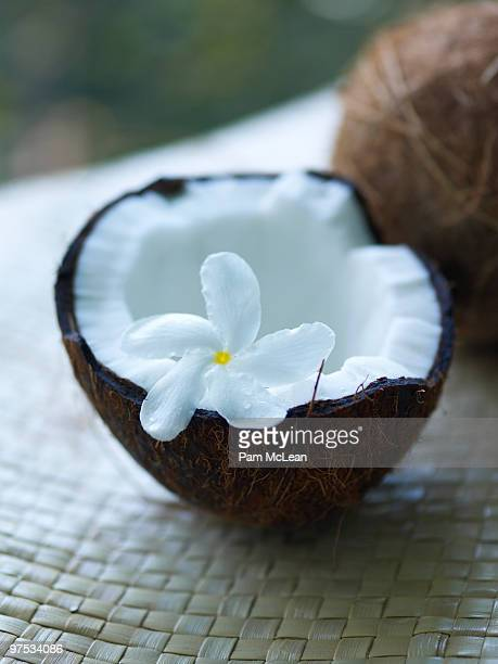 coconut with white flower