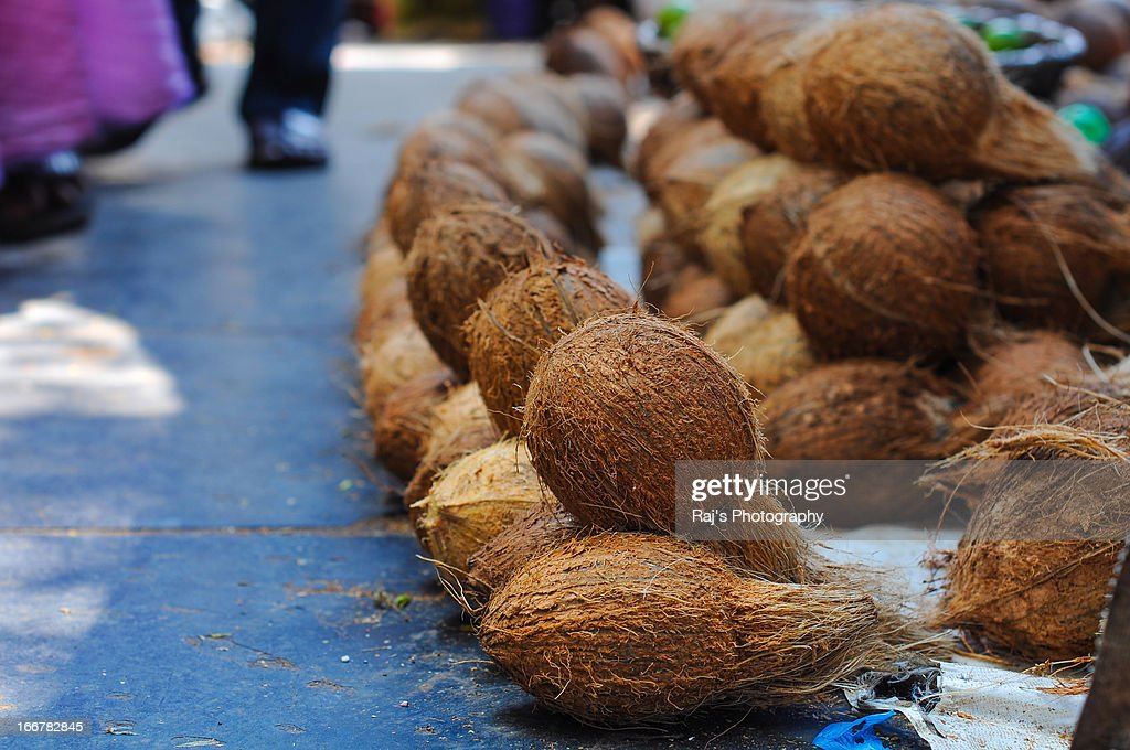 Coconuts for sale in a market at Puducherry : Stock Photo