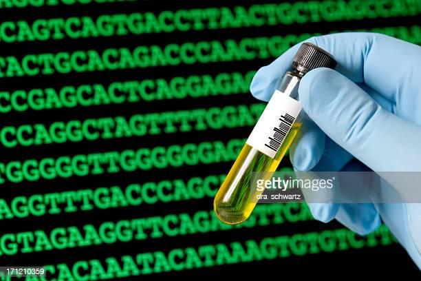 Codice del DNA per l'analisi