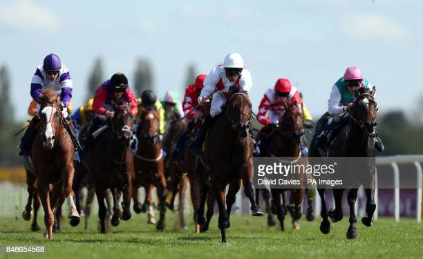 Code of Honour ridden by Dane O'Neill wins the Wedgewood Estates EBF Maiden Stakes at Newbury Racecourse