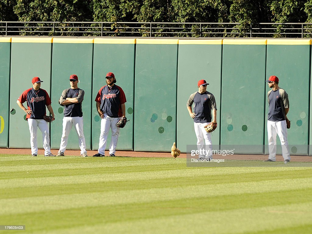 Cody the Chicken joins the Cleveland Indians pitching staff in the outfield during batting practice prior to a game against the Baltimore Orioles on September 4, 2013 at Progressive Field in Cleveland, Ohio. Cody was a gift to Indians reliever Cody Allen from pitcher Justin Masterson. Cleveland won 6-4.