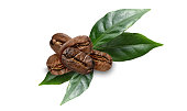 coffe beans with leaves on white