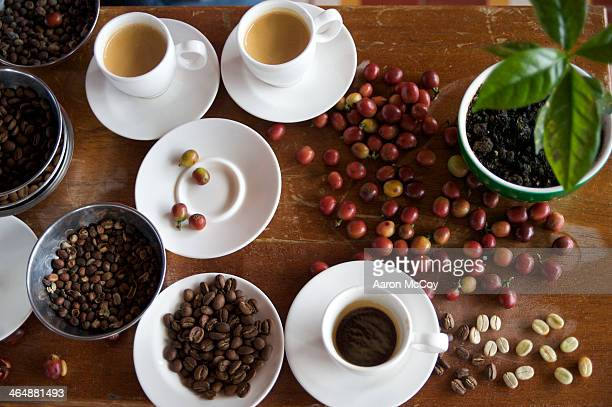 Coffee at the farm