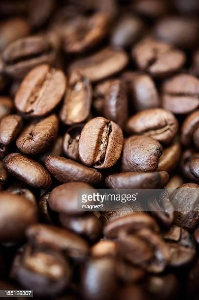 Kaffee Bohne Hintergrund