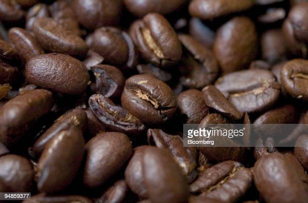 Coffee beans are set up for a photograph in a Starbucks store in New York on December 30 2004 Coffee prices may rise to a sixyear high in 2005 after...