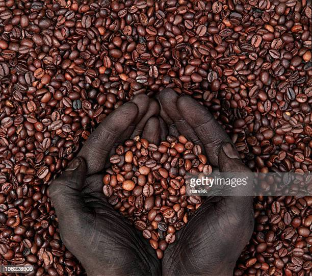 Coffee Beans in Heart Shape and Human Hands