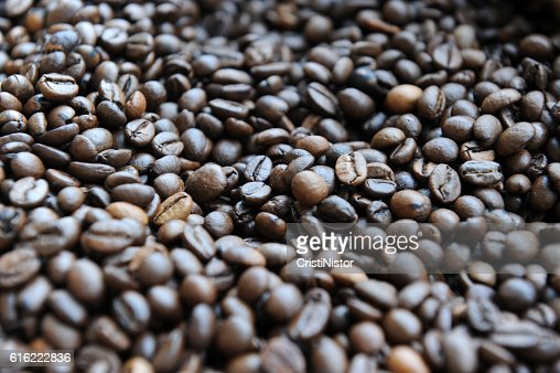 Grains de café  : Photo