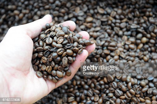 Coffee beans : Stock Photo