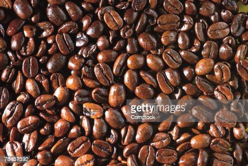 Coffee beans : Stock Photo