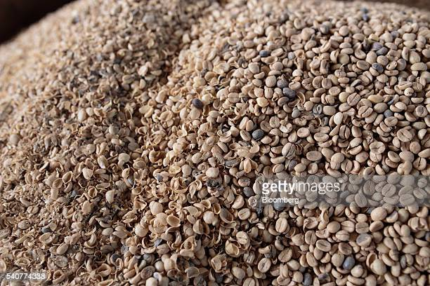Coffee grains are peeled and dried at a plantation in the Minas Gerais state near Guaxupe Brazil on Monday June 13 2016 Arabica coffee declined...