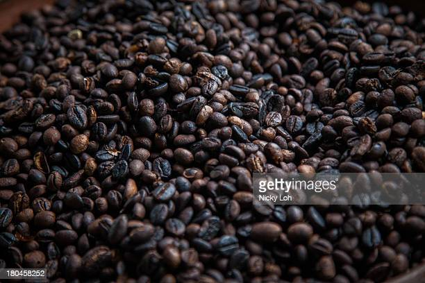 Coffee seeds are displayed inside a 'Kopi Luwak' or Civet coffee farm and cafe on May 27 2013 in Tampaksiring Bali Indonesia World Society for the...
