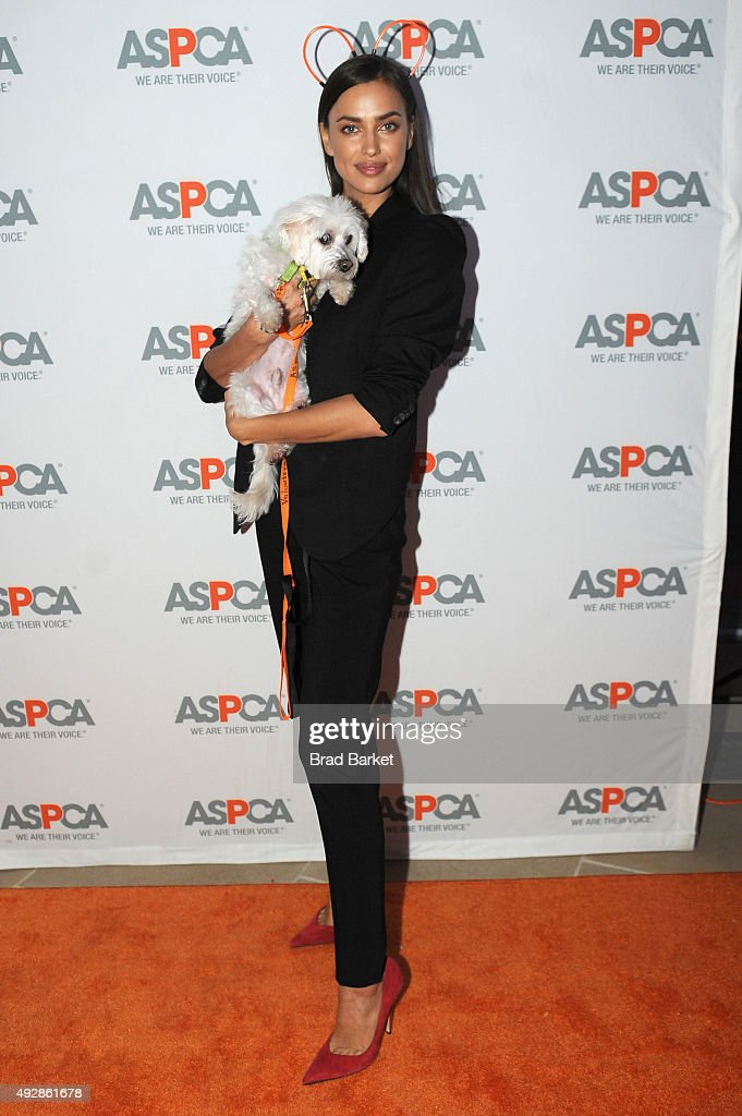 Cohost model Irina Shayk attends the ASPCA Young Friends benefit at IAC Building on October 15 2015 in New York City