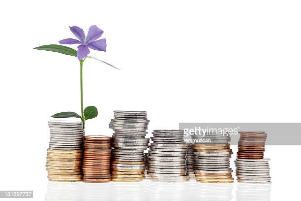 Coins and Flower