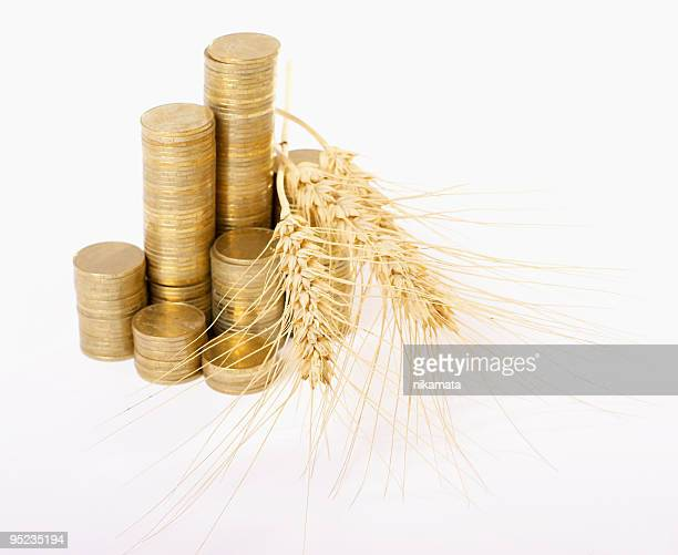 coins and wheat ears
