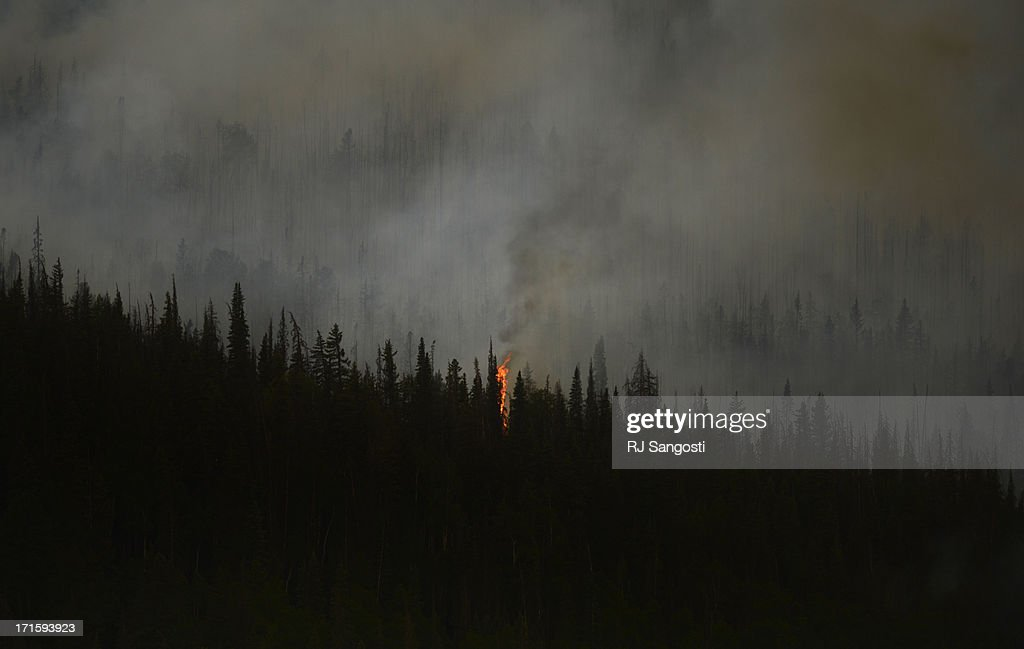 Fire shoots from the trees at the Papoose Fire, June 26, 2013. The wildfire in southwestern Colorado continues to have potential for growth.
