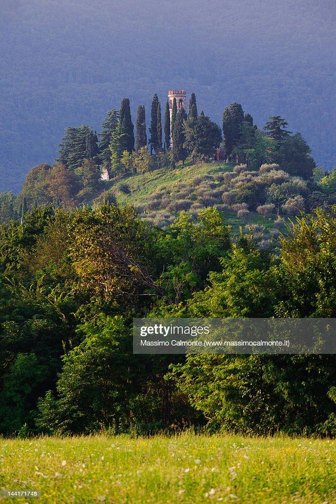 Col Bastia and Torre Ezzelini : Stock Photo