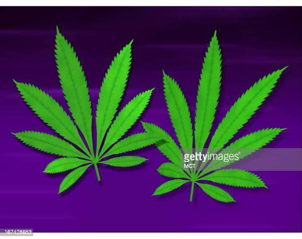 2 col x 3 in / 96x76 mm / 327x259 pixels Kurt Strazdins color illustration of two marijuana leaves on a dark blue background