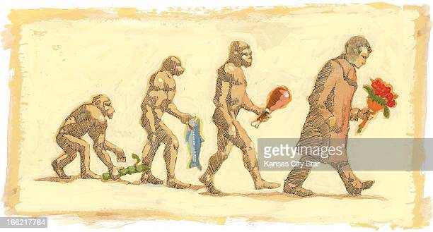 6 col x 625 in / 295x159 mm / 1004x540 pixels Allan Chow color illustration of the evolution of the Valentine's gift from early man carrying suger...