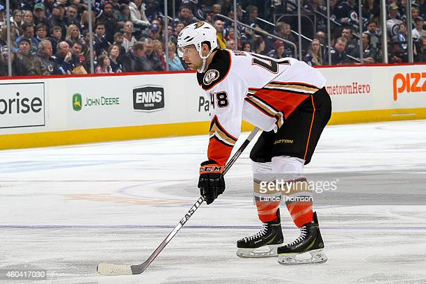 Colby Robak of the Anaheim Ducks gets set for a first period faceoff against the Winnipeg Jets on December 7 2014 at the MTS Centre in Winnipeg...