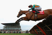 Cole Harden ridden by Gavin Sheehan clears a fence on the first lap on their way to winning the Ladbrokes World Hurdle during St Patrick's Thursday...