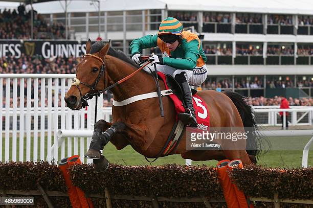 Cole Harden ridden by Gavin Sheehan clears the last fence on their way to winning the Ladbrokes World Hurdle during St Patrick's Thursday at the...