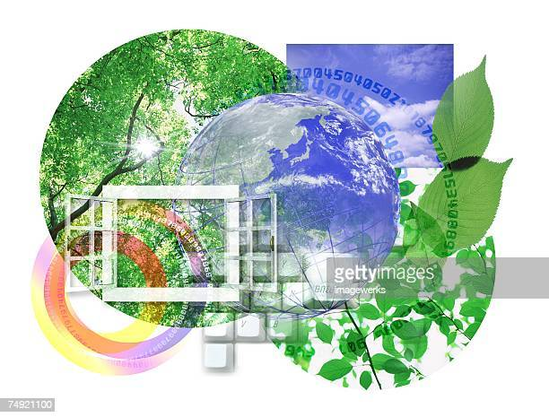 Collage of tree and globe